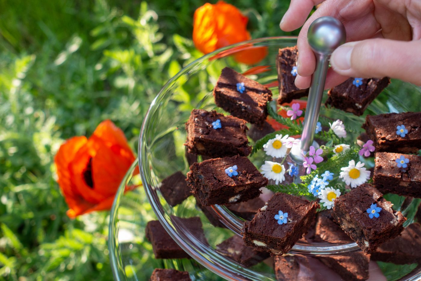Chocolate brownies on a cake plate decorated with spring flowers