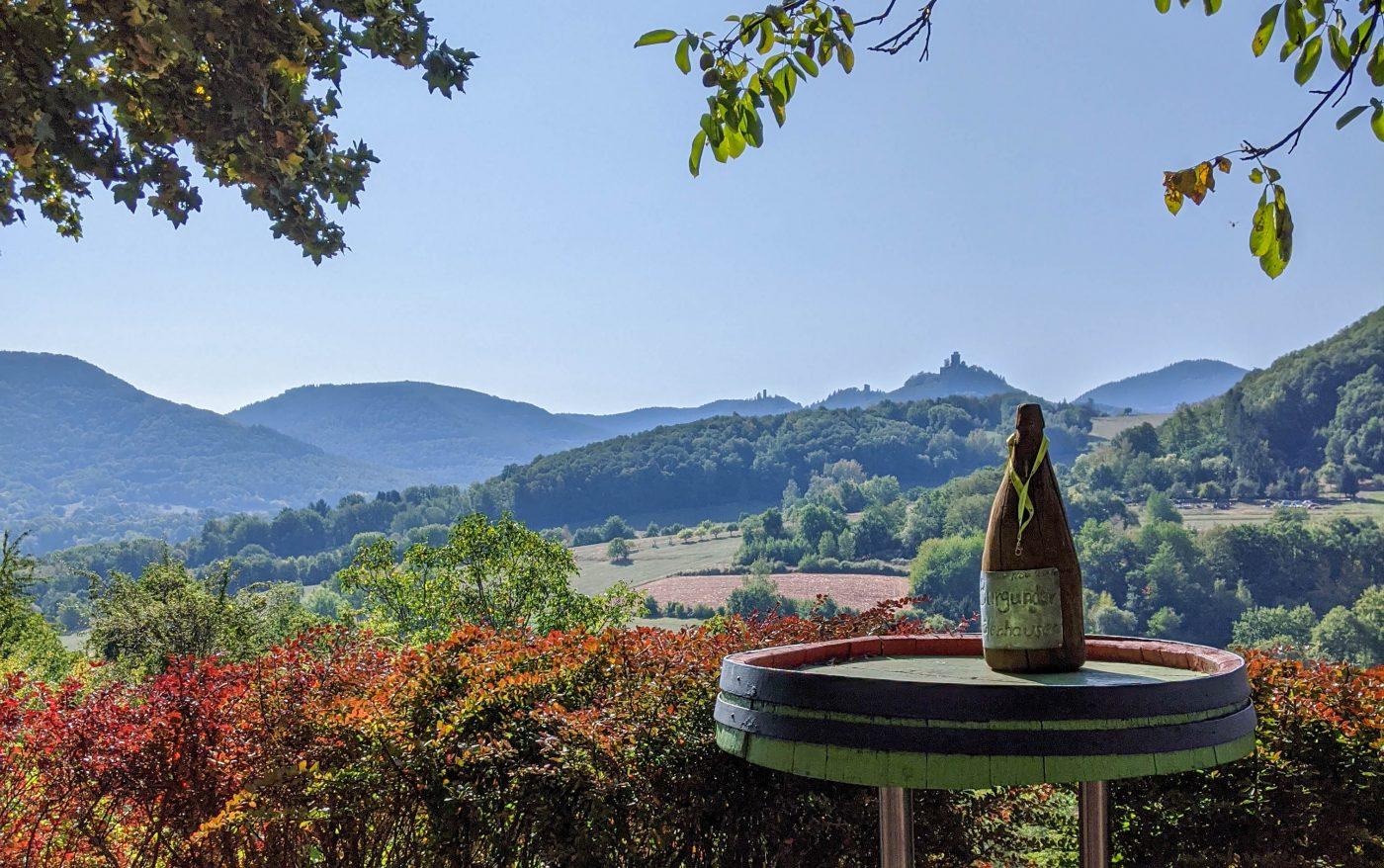 Landschaftsblick am Pfälzer Weinsteig